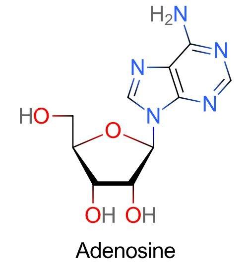 Nucleósido de adenosina